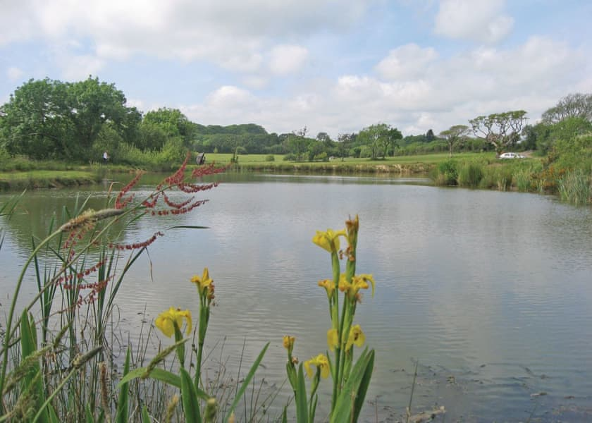 Florence Springs Glamping, Tenby,Dyfed,Wales